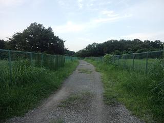 砂利の抜け道.jpg
